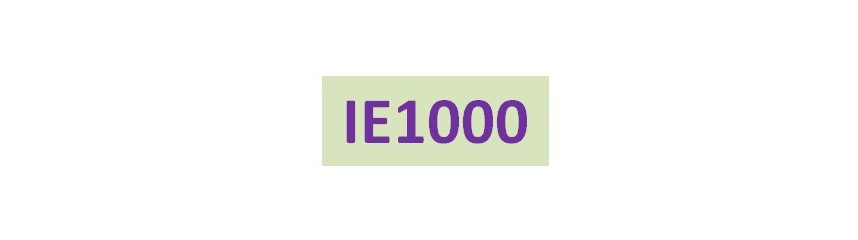 IE1000